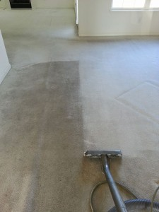 carpet-cleaning-process